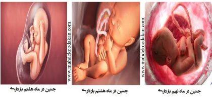 ماهه سوم2 420x199 - سه ماهه سوم بارداری: تغییرات در جنين، مادر و پدر