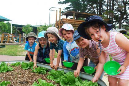 چگونه در حیاط مهد کودک باغچه طراحی کنیم؟